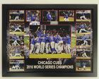 Cubs_celebration009-college